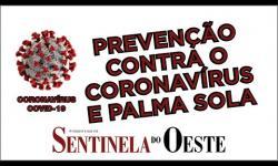 Palma Sola se previne contra o coronavírus