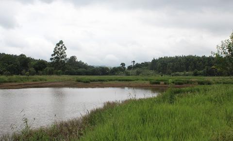 Vereador cobra explicações sobre o Lago Municipal