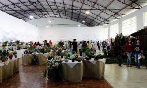Cancelada a 8º Exposição de Orquídeas