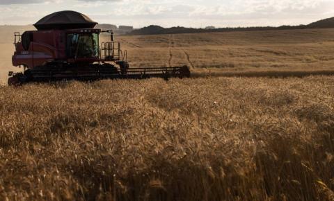 Sicoob demanda de R$ 4,2 bilhões para atender o produtor rural na próxima safra